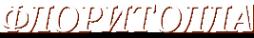 Логотип компании Флоритолла школа коллажа