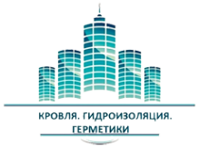 Логотип компании БИЗНЕС СТРОЙ+