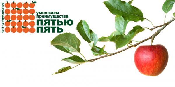 Логотип компании Пятью Пять