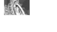 Логотип компании АвтоПартс