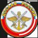 Логотип компании ДОСААФ России