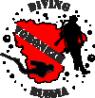Логотип компании Воронеж Дайв