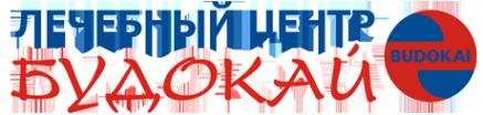 Логотип компании Будокай
