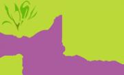 Логотип компании ELOSTIME