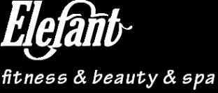Логотип компании Elefant