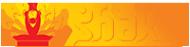 Логотип компании Shakti