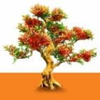 Логотип компании Ортопедия Красота Здоровье