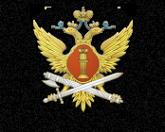 Логотип компании Воронежский институт ФСИН России