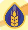 Логотип компании Региональный партнер
