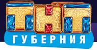 Логотип компании ТНТ-Губерния
