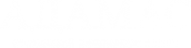 Логотип компании Адамас